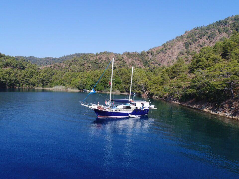 ICARUS Teknesi