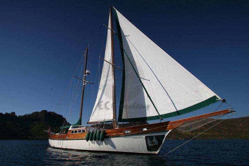 VONGOLE Teknesi